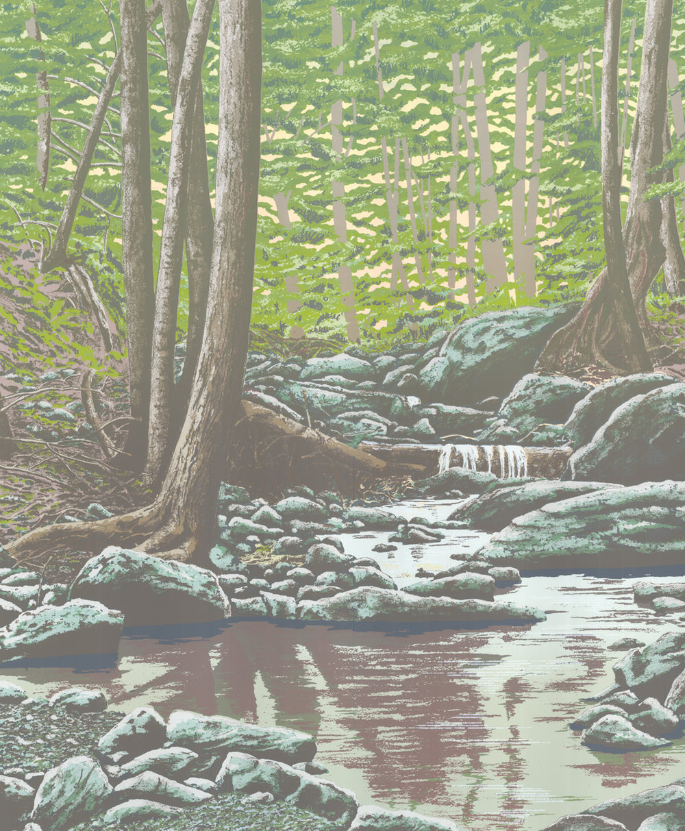 "234   Forest Faces - 6.1   20"" x 24"" 14 colors 10 edition / 4 available  $775"