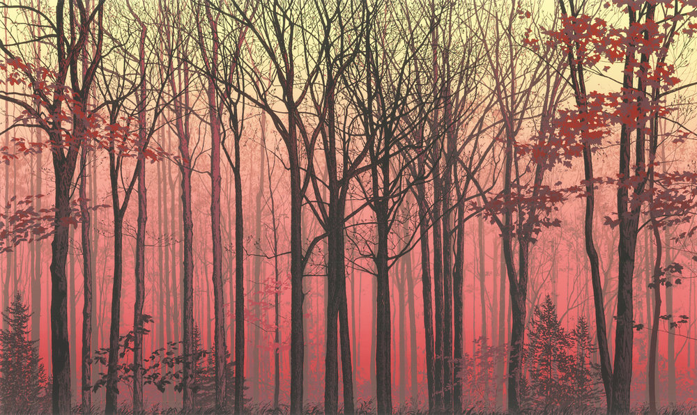 "226   Forest Faces 4   24"" x 40"" – 610 x 1016mm 25 colors 10 edition / 5 available $1,200"