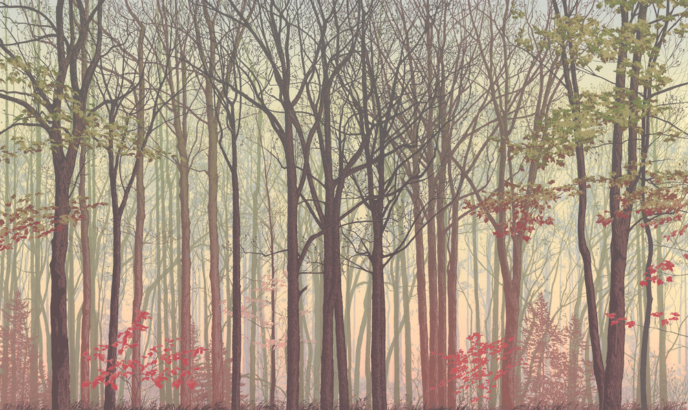 "225   Forest Faces 3.2   24"" x 40"" – 610 x 1016mm 25 colors 9 edition / 5 available $1,200"