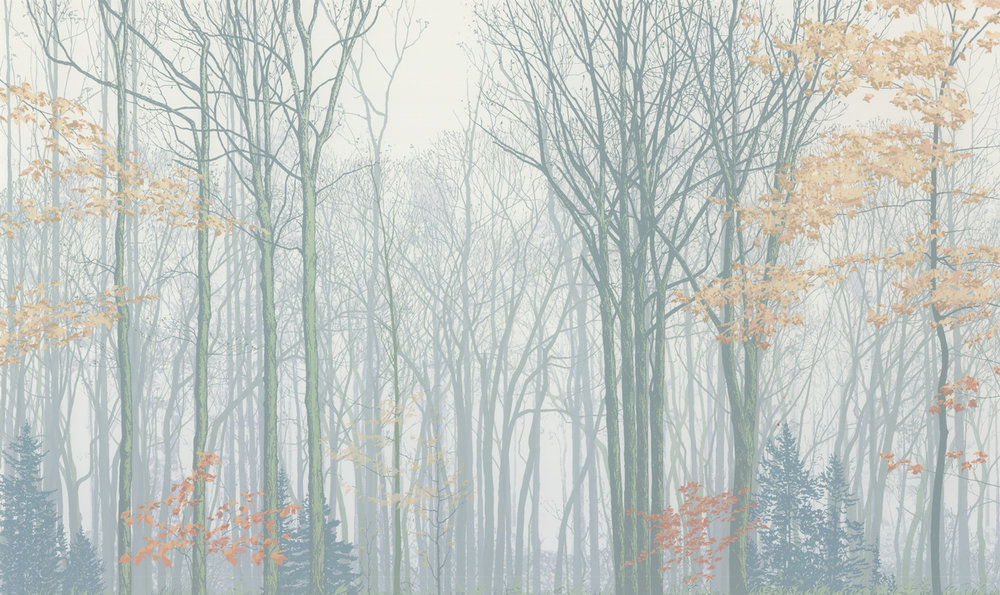 "221   Forest Faces 1   24"" x 40"" – 610 x 1016mm 25 colors 8 edition / 5 available $1,200"