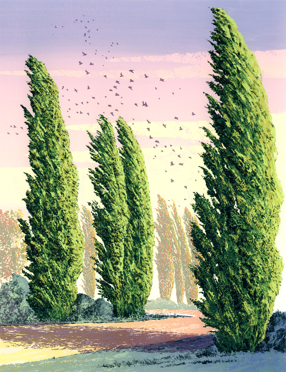 "199   Poplars 3   24"" x 18"" – 610 x 460mm 19 colors 25 edition / 20 available $450"