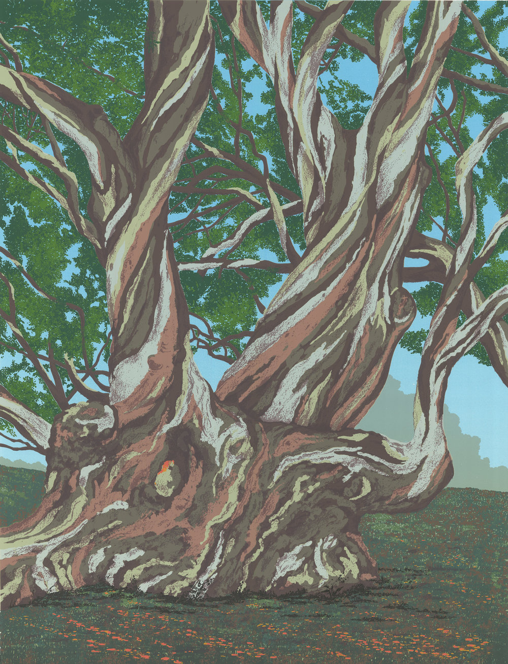 "186   Gum Trees - state 3   24"" x 18"" – 610 x 460mm 20 colors 10 edition / 4 available $450"