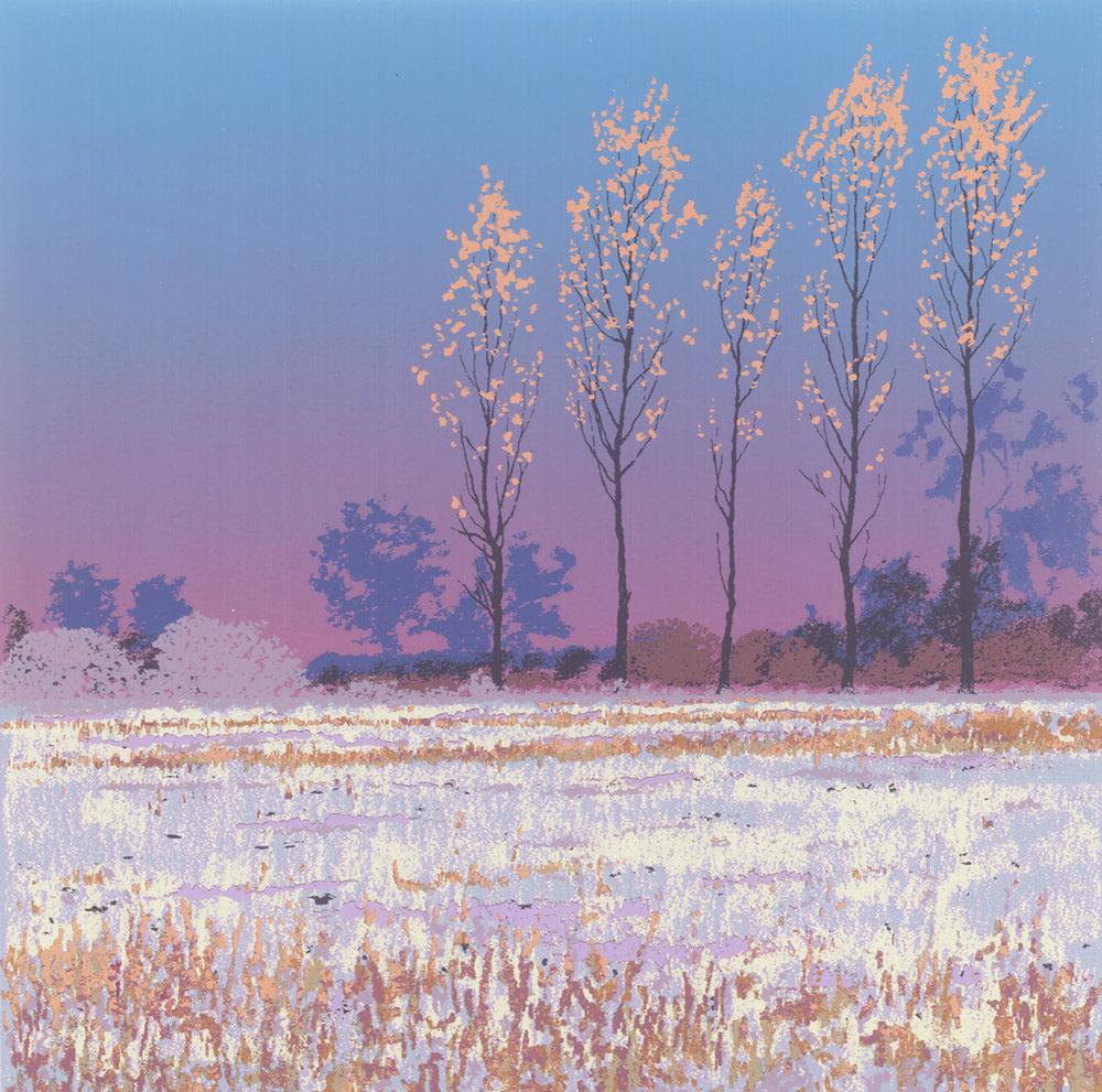 Quiet Fields 2