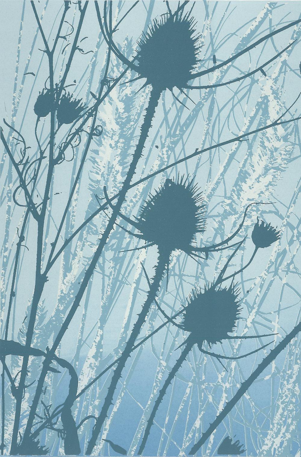Winter Shadows 1