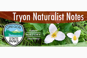 tryon-creek-naturalist-notes.jpg
