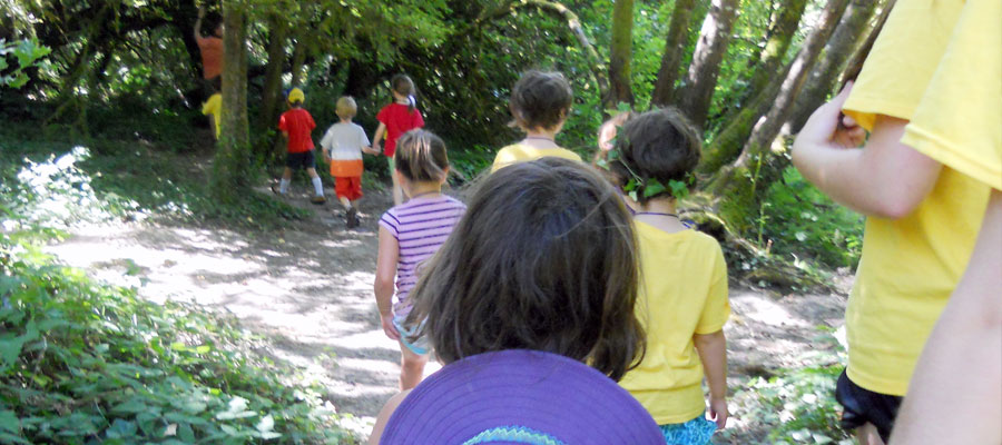 tryon-creek-summer-camp-friendship-stewardship-group.jpg
