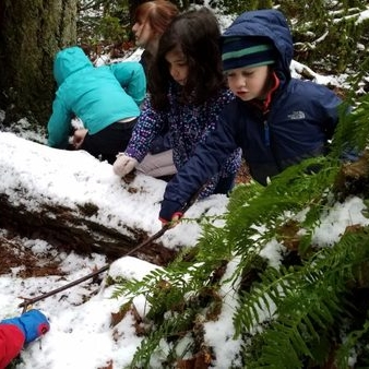 The Forest in Winter 2-Hour or 4-Hour Program Kindergarten - 5th Grade Winter Only Read more →