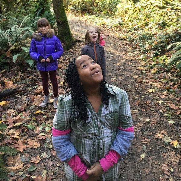Trees are Terrific  2-Hour Program Kindergarten - 2nd Grade Year-round Read more →