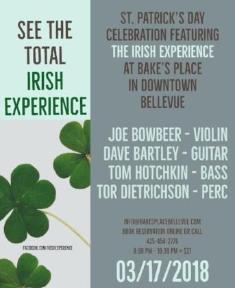The Irish Experience.jpg