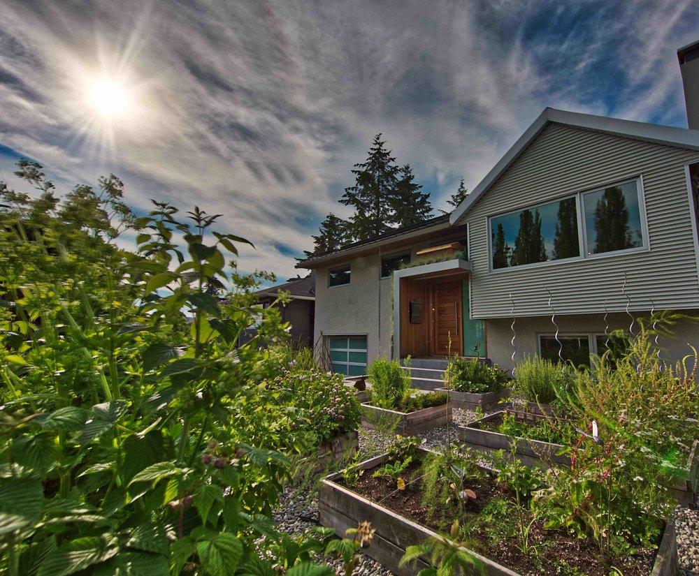 Mindful Home Colibri.jpg