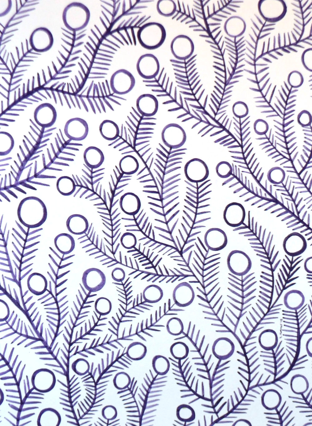purple white.jpg