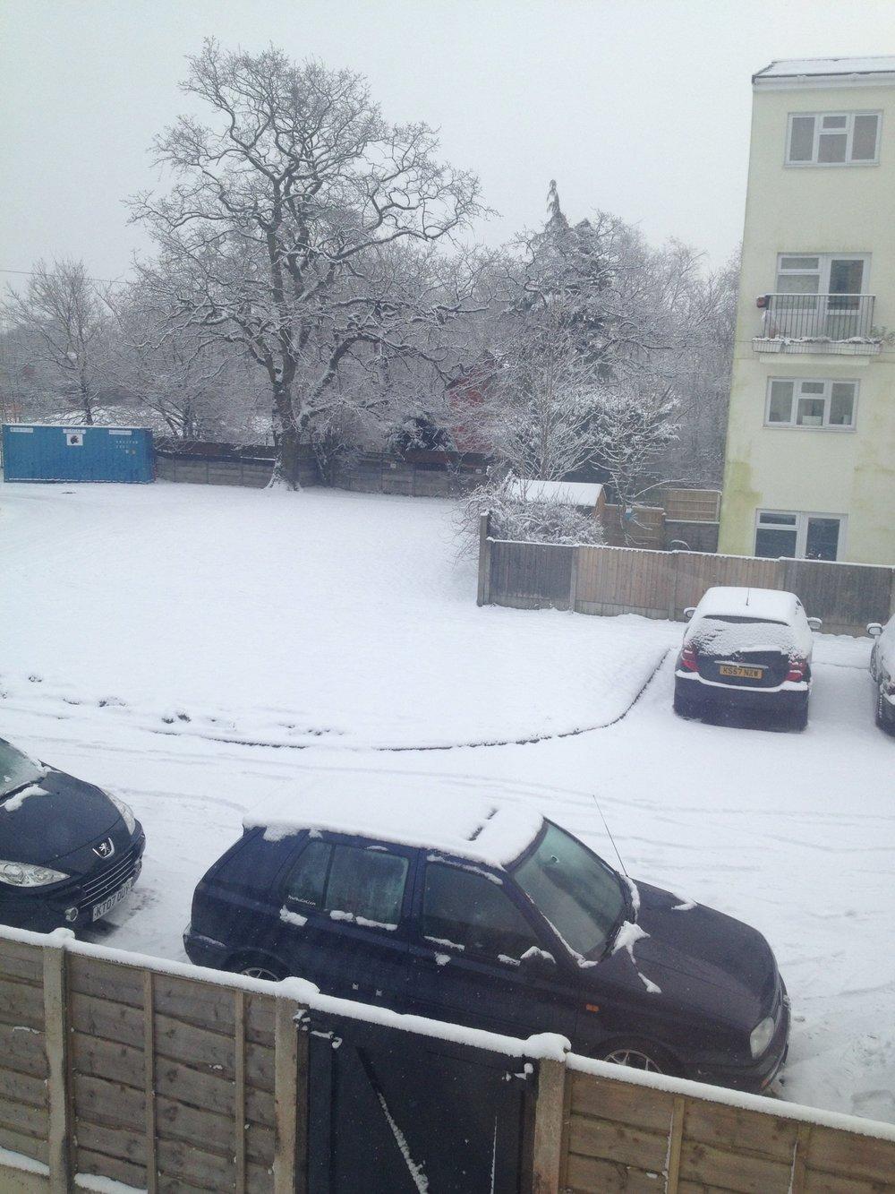 Snow-21.01.13.jpg