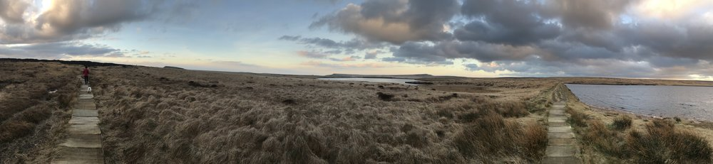 Pano shot looking at Black Moss and away - all in one photo.