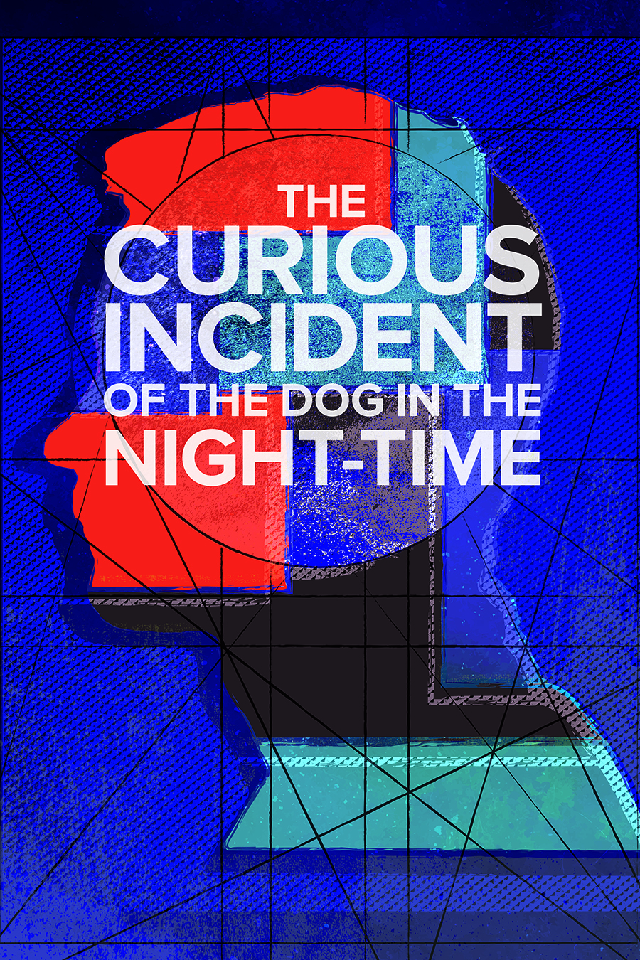 Curious_Incident_3x4.5.jpg