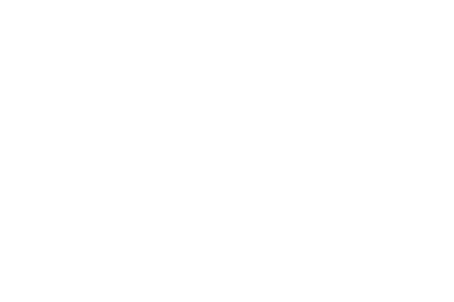 Zenith Insured Credit