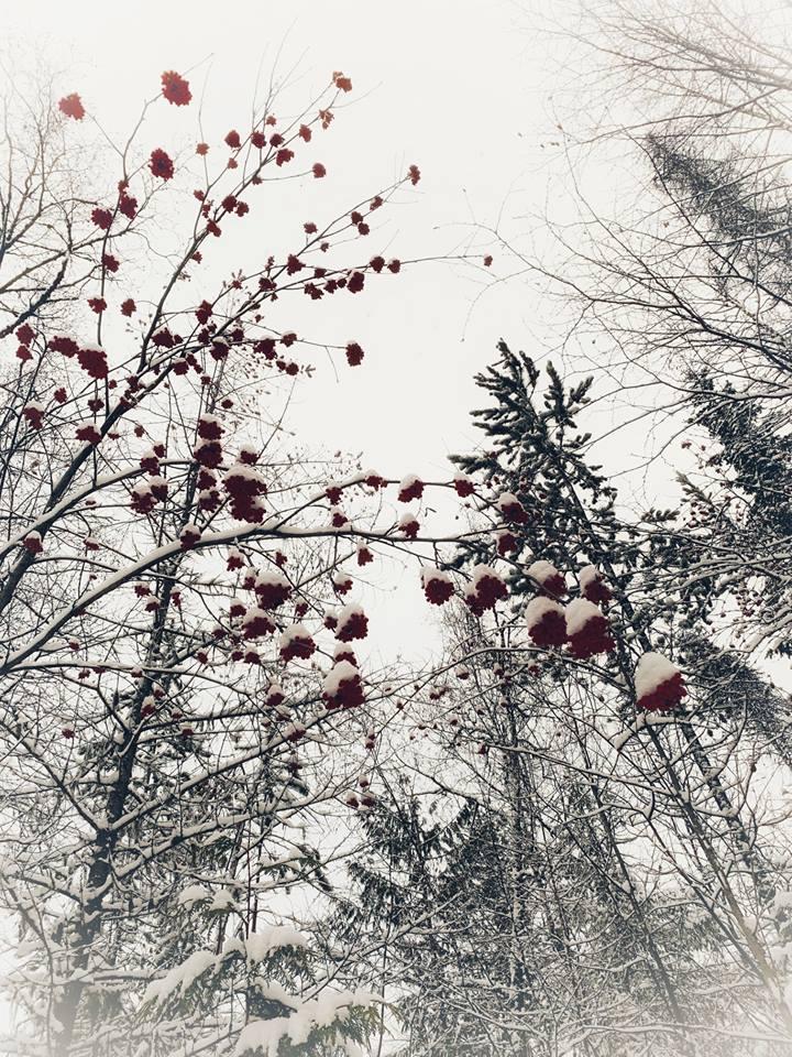 Winter walk, Christmas snow, Nelson, British Columbia