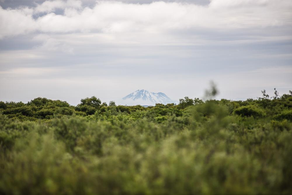 Mt. Katmai