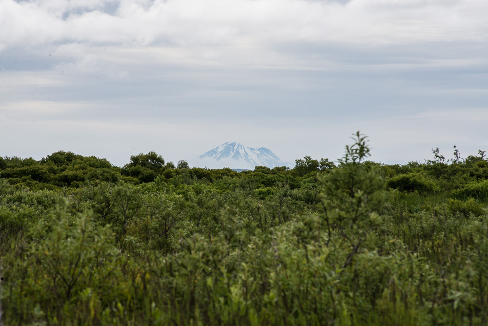 Likely an unnamed mountain peaking its head out through the dense foliage lining the tributary banks