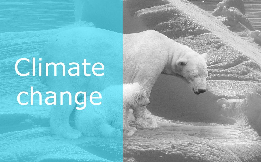 evision-blog-climate-change.jpg