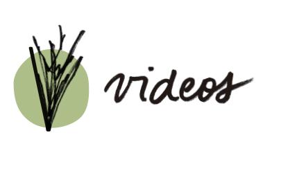 logo-videos-horizontal.jpg
