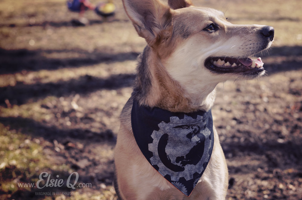 Up-cycled dog bandanas.  Made from vintage t-shirts.