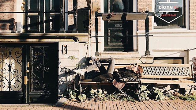 #Amsterdam @eva.gourdon #autumn #colors #stone #bench #weed #love