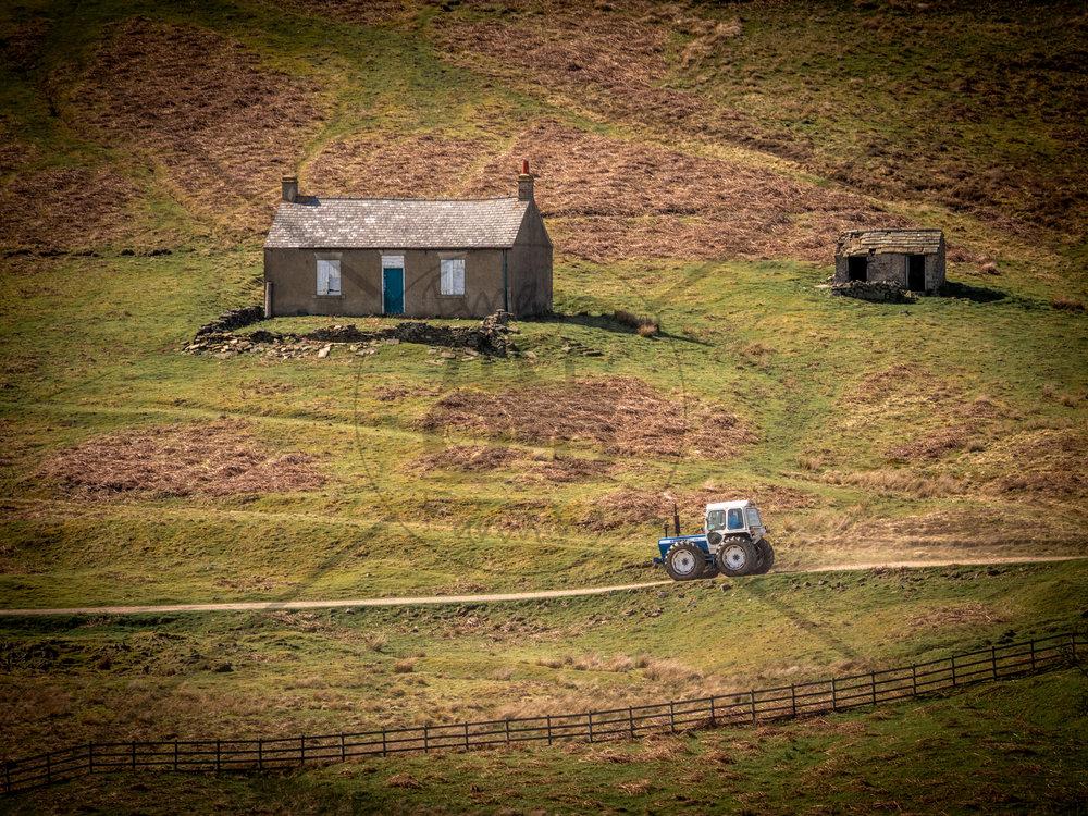 county-cottage-colour.jpg