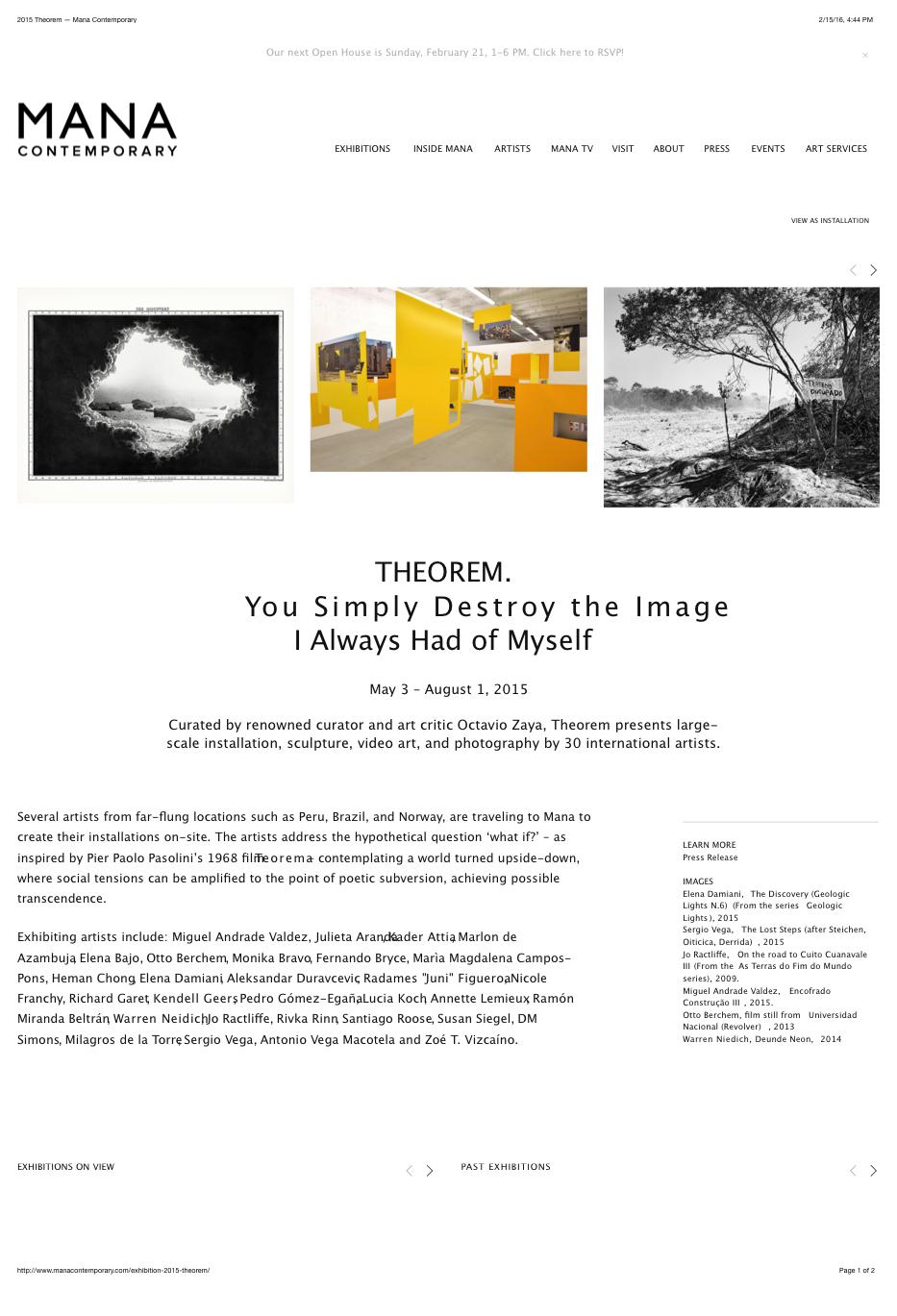 2015 Theorem — Mana Contemporary copy.png