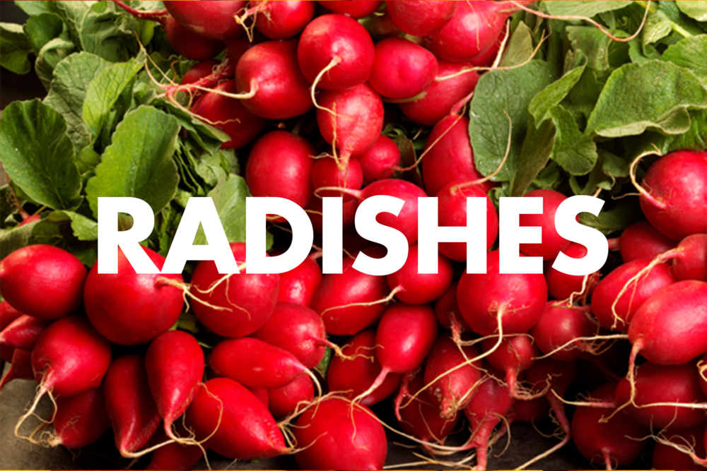 Radishes.png