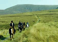 trailriding-in-kerry.jpg