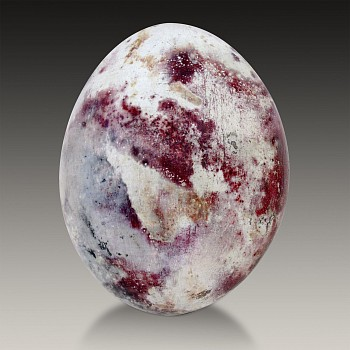 Beach Fired Egg