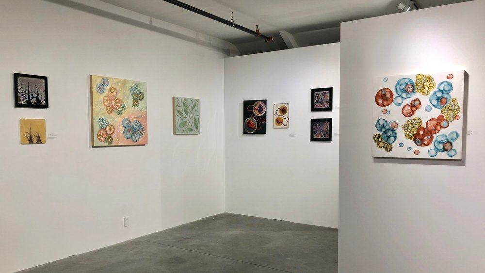 MICROBIAL VISIONS  , at  Fountain Street , work by Kay Hartung, Maria Peñil Cobo and Mehmet Berkmen, January – February, 2019