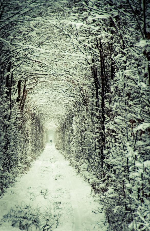 Best of Days Tunnel.jpg