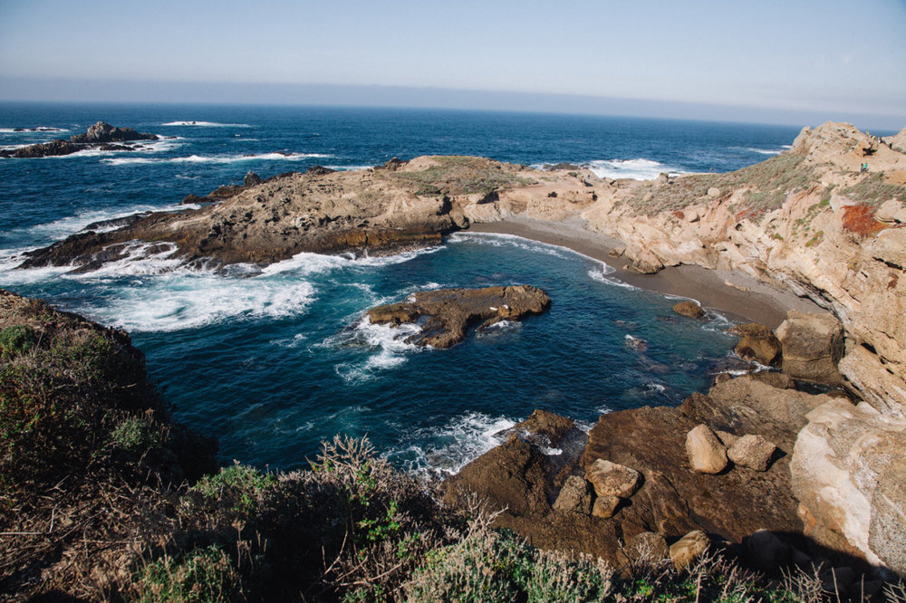 Just got back from a fun road trip to California. One of the highlights was definitely the drive down Highway 1 from San Francisco to Los Angeles.  Here is a shot from Point Lobos State Reserve. There were sea lions just off the shore, seal swimming around, and sea otters playing in the kelp. Magical.