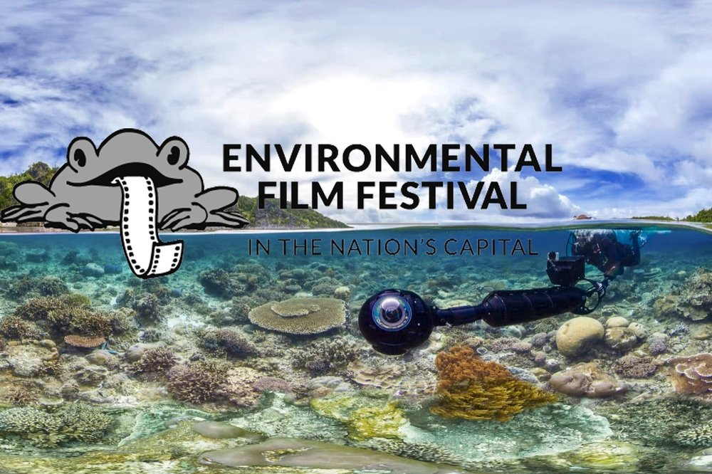 Environmental Film Festival DC (DCEFF) will feature Chasing Coral's virtual reality (VR) experience March 17th and 24th (Photos Courtesy of The Ocean Agency and DCEFF)