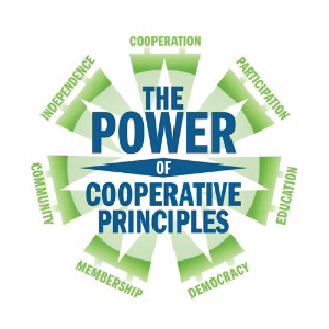 power_coop_principles.png