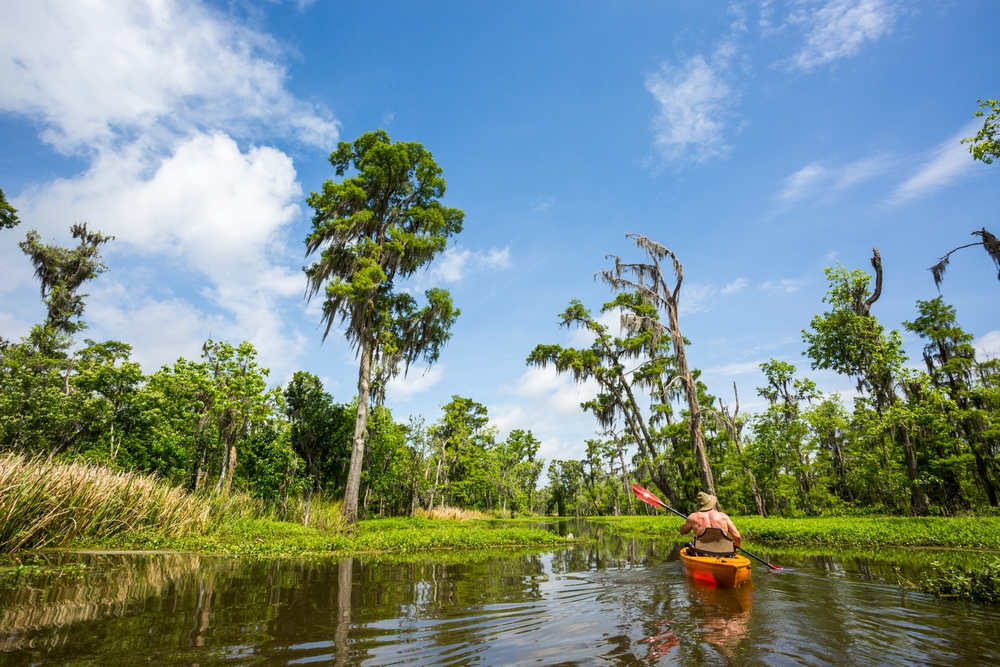 new-orleans-swamp-tour-paddle-kayak-outdoors (1).JPG