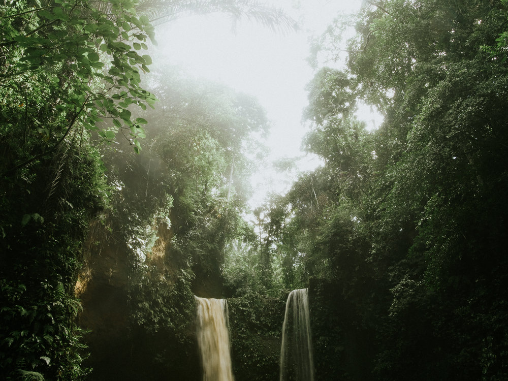 Bali Rainforest Waterfalls
