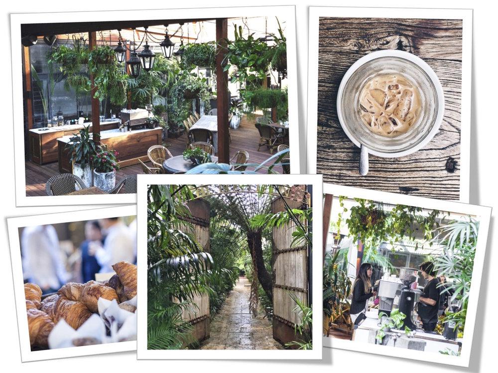 Bonython cafe.jpg