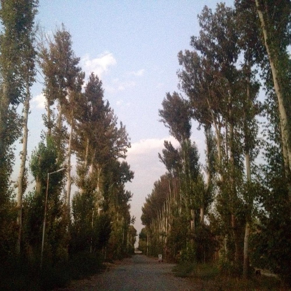 #Iran | Day 28