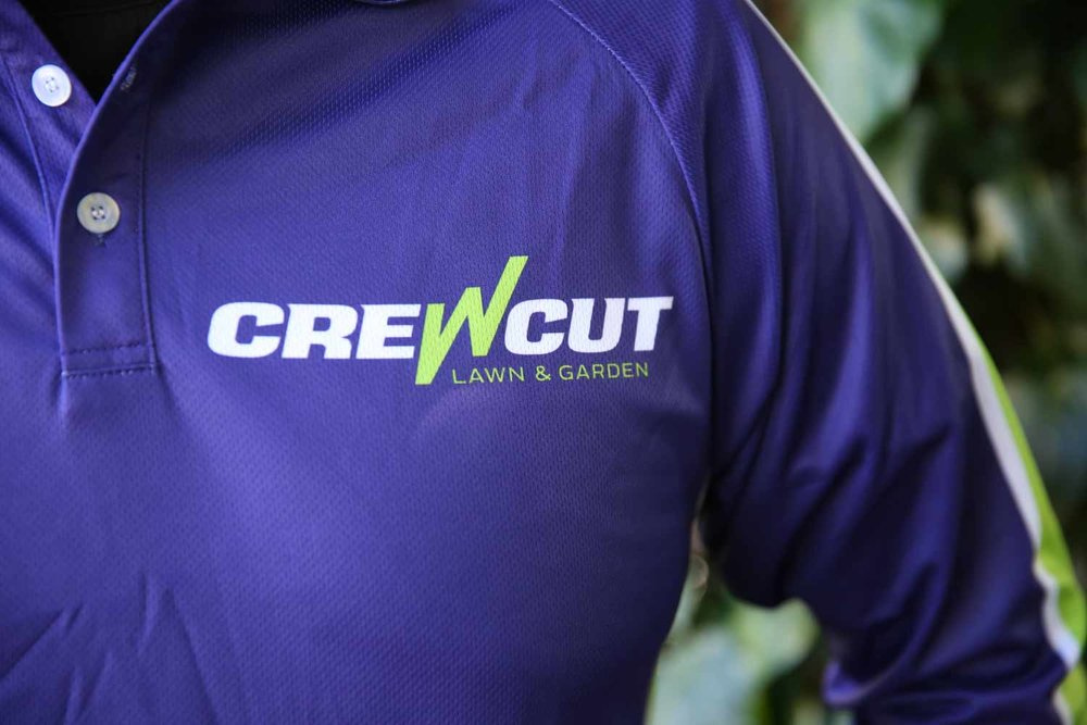 Close-up of Crewcut business owner's shirt