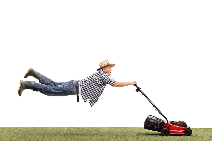 Need help with lawn mowing?