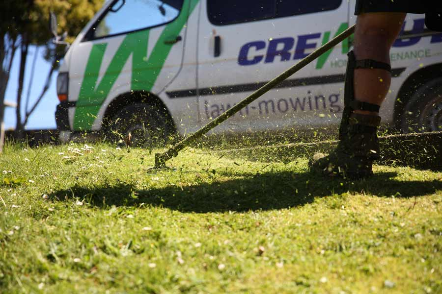 Lawn mowing and weedeater next to a Crewcut van