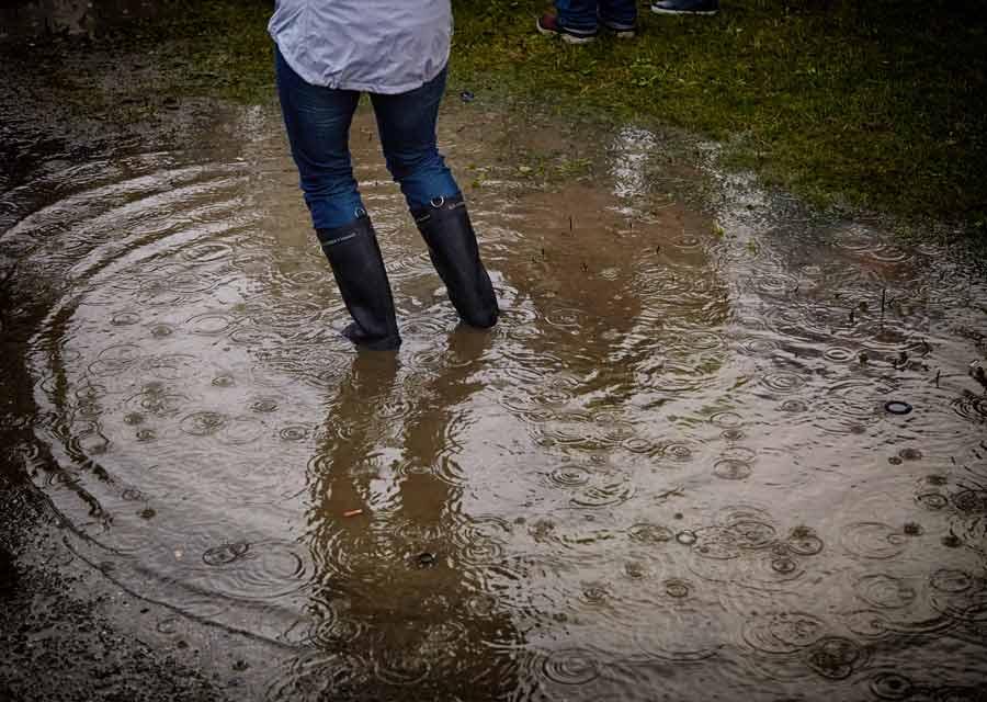 flooded-lawn.jpg