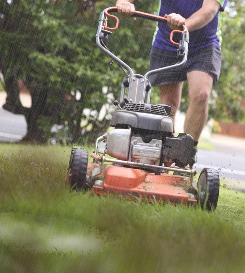 mowing-lawns-winter.jpg