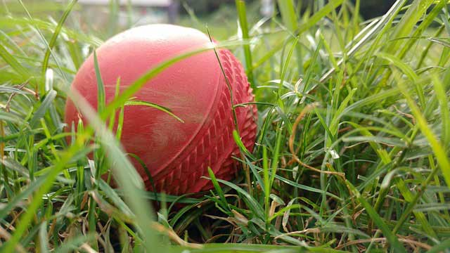 cricket-ball-summer.jpg