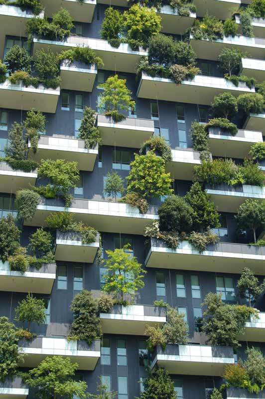 Trees siting on apartment balconies