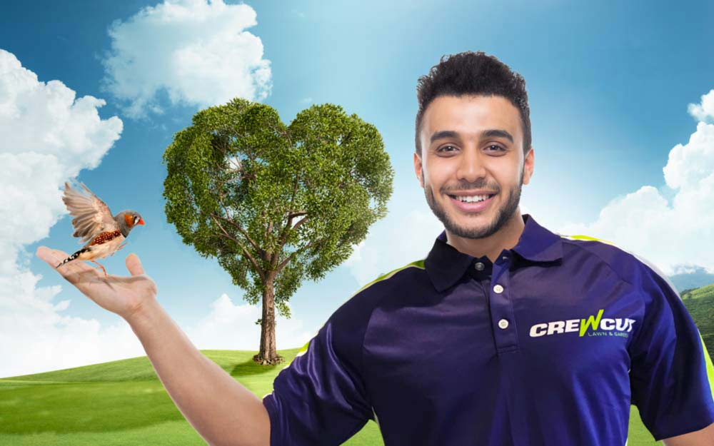 Crewcut operator holds small bird with tree in background