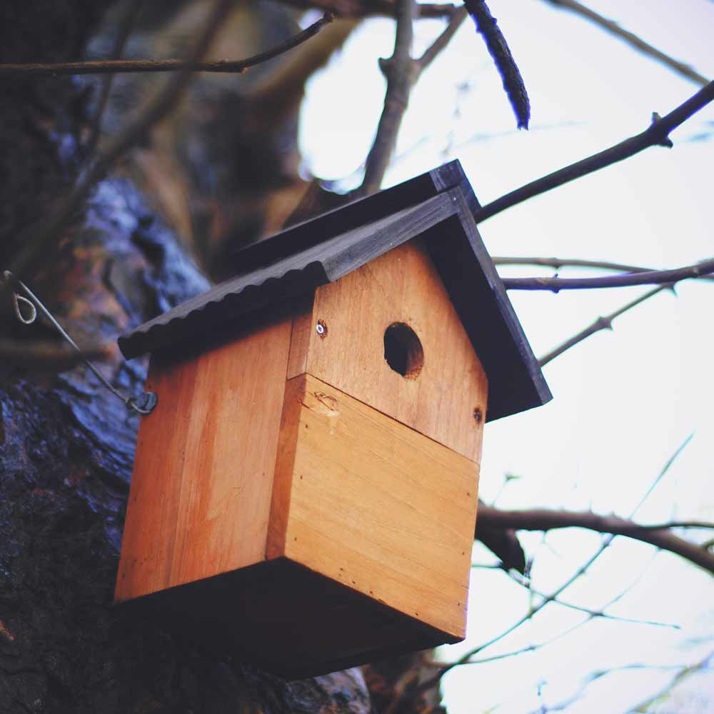 Wooden bird house against a tree