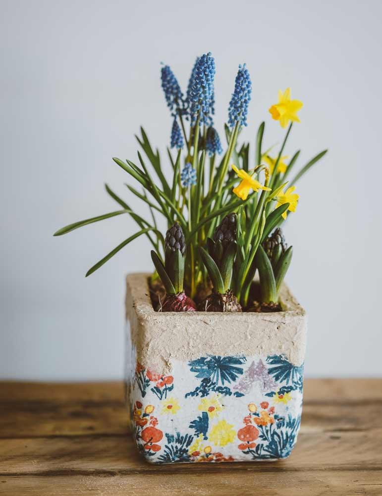daffodils-pot.jpg